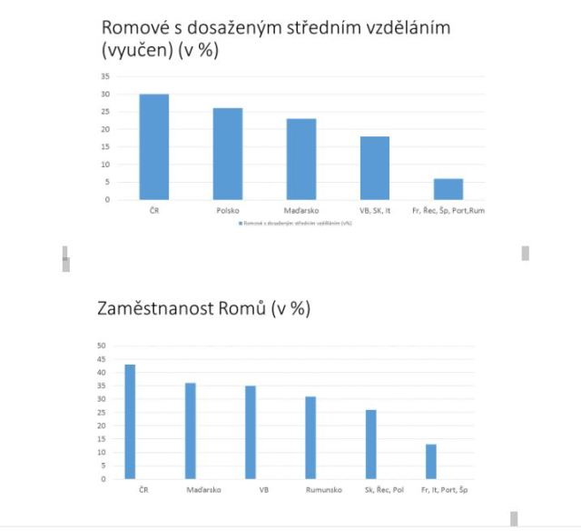 Vzdělání Romů -studie EU