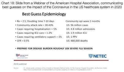 Graf 18: Slide z webináře Americké nemocniční asociace ohledně dopadu koronaviru na americký zdravotní systém v roce 2020